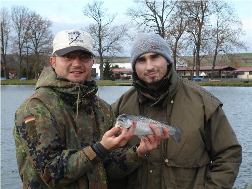 fische einlegen zum räuchern